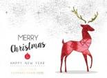 Red Deer Illustration